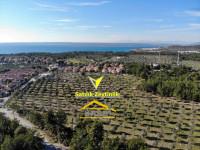 Muğla Milas Kazıklıbucak'ta Satılık Zeytinlik Plaja 700 Metre,10 Dönüm