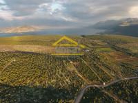 Didim Bozseki'de Yatırımlık Villa Arsası